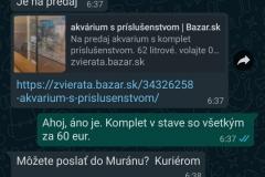 Screenshot_20210501-130005_WhatsApp