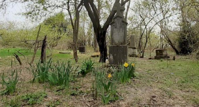 Šamorín: V Bučuháze môže vzniknúť prírodný cintorín