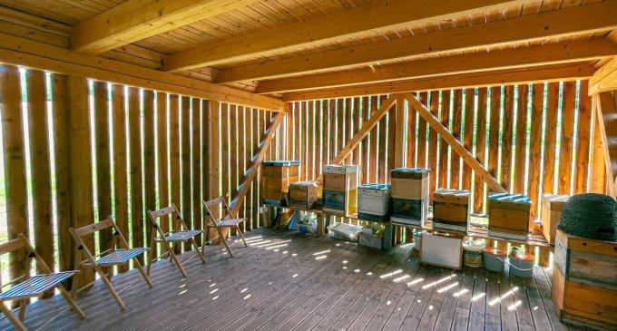 VNovohrade pribudol unikátny Motýlí dom